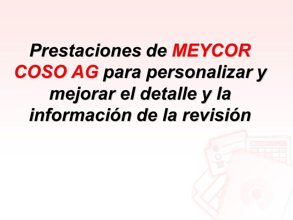 Prestaciones de MEYCOR COSO AG para personalizar y mejorar el detalle y la información de la revisión