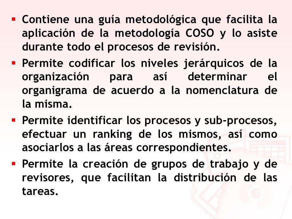 Contiene una guía metodológica que facilita la aplicación de la metodología COSO y lo asiste durante todo el procesos de revisión.