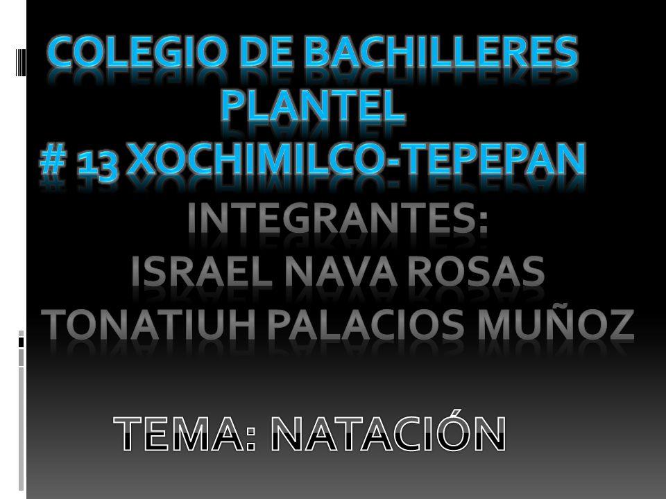 Colegio de bachilleres plantel Tonatiuh palacios muñoz