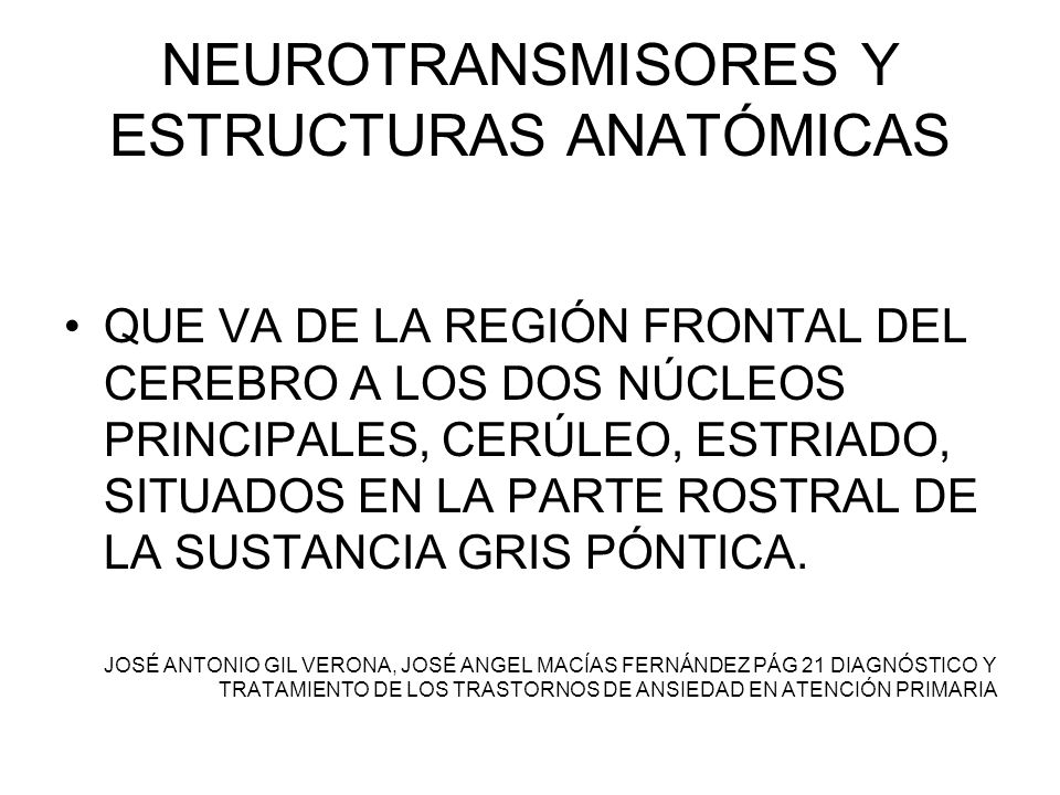 NEUROTRANSMISORES Y ESTRUCTURAS ANATÓMICAS