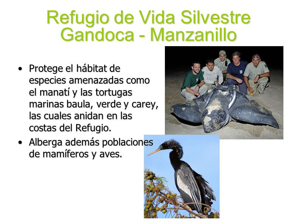 Refugio de Vida Silvestre Gandoca - Manzanillo