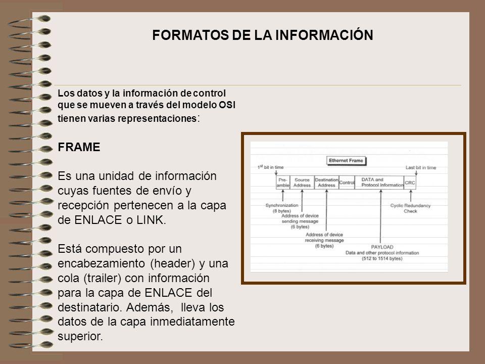 FORMATOS DE LA INFORMACIÓN