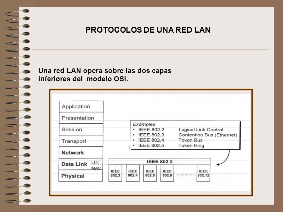 PROTOCOLOS DE UNA RED LAN