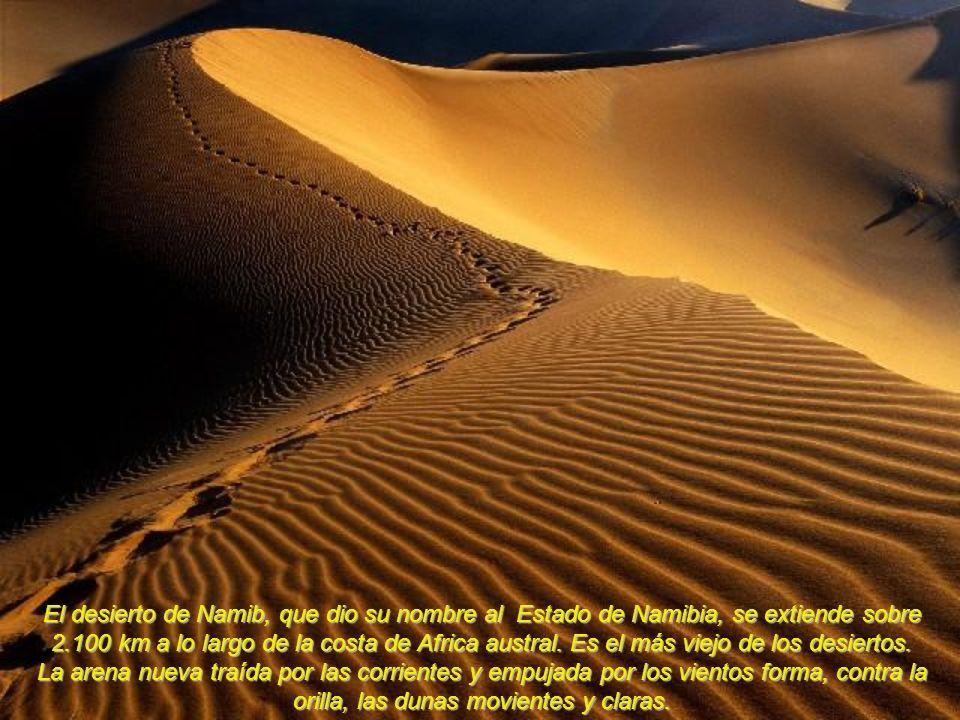 El desierto de Namib, que dio su nombre al Estado de Namibia, se extiende sobre 2.100 km a lo largo de la costa de Africa austral.