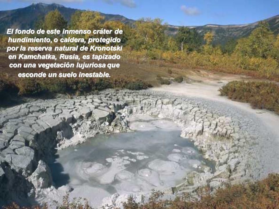 El fondo de este inmenso cráter de hundimiento, o caldera, protegido por la reserva natural de Kronotski en Kamchatka, Rusia, es tapizado con una vegetación lujuriosa que esconde un suelo inestable.