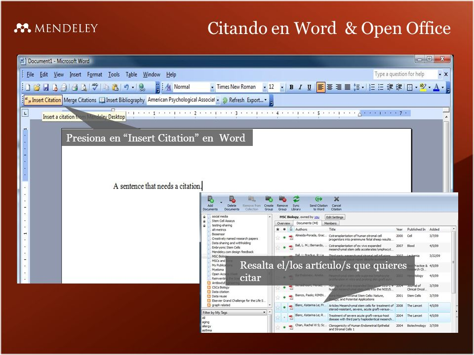 Citando en Word & Open Office