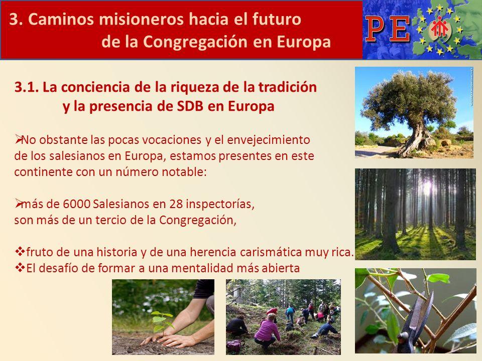 3. Caminos misioneros hacia el futuro de la Congregación en Europa