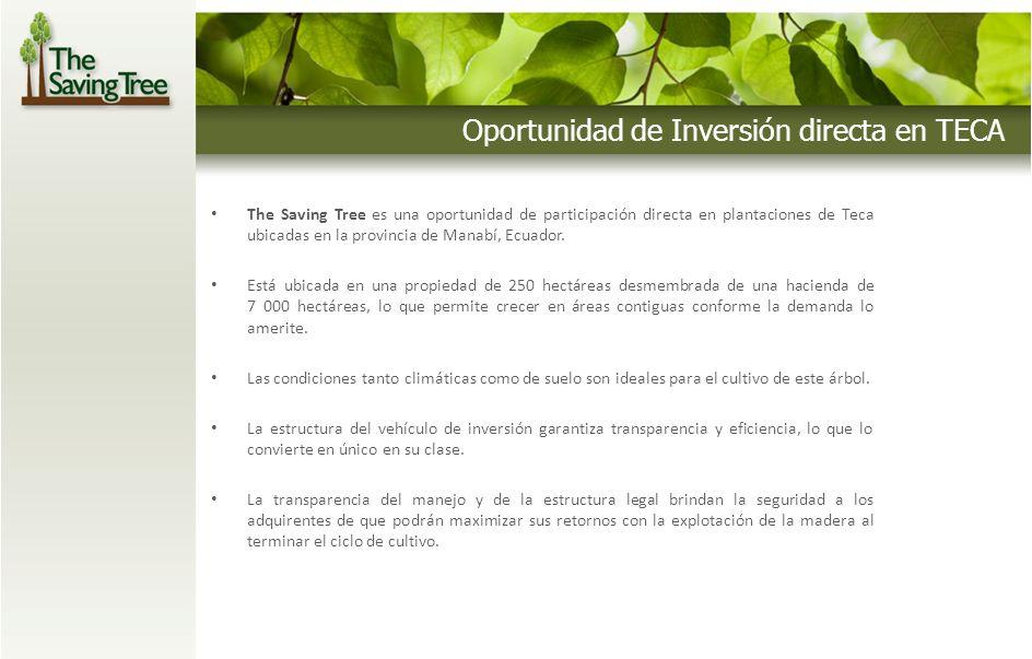 Oportunidad de Inversión directa en TECA