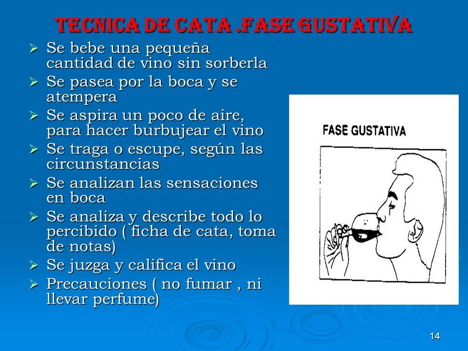TECNICA DE CATA .FASE GUSTATIVA