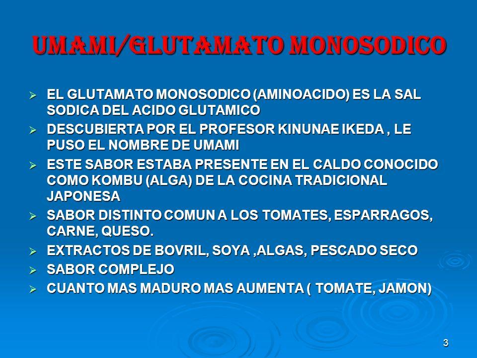 UMAMI/GLUTAMATO MONOSODICO