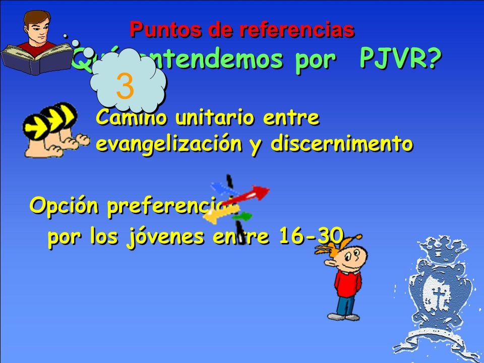 Puntos de referencias ¿Qué entendemos por PJVR