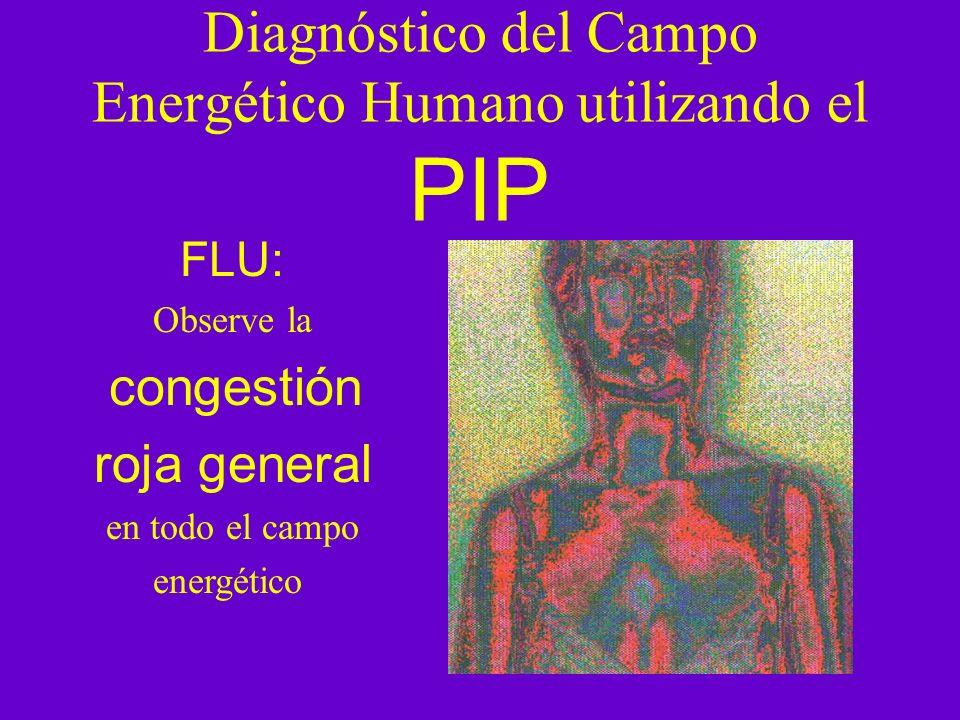 Diagnóstico del Campo Energético Humano utilizando el PIP