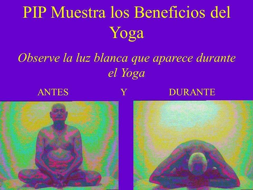PIP Muestra los Beneficios del Yoga