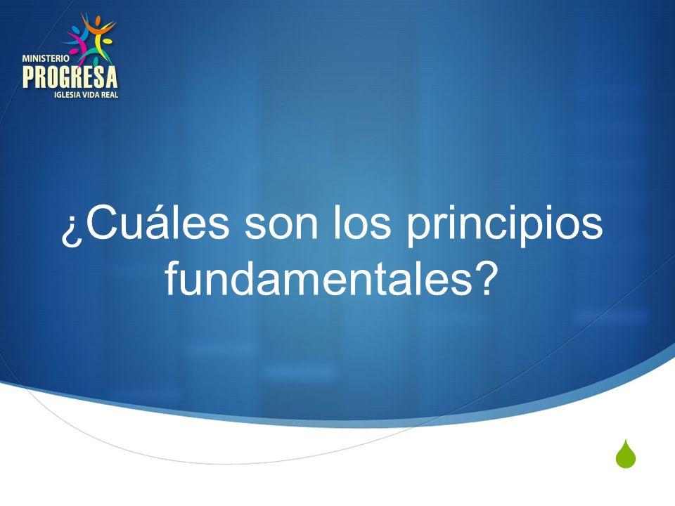 ¿Cuáles son los principios fundamentales