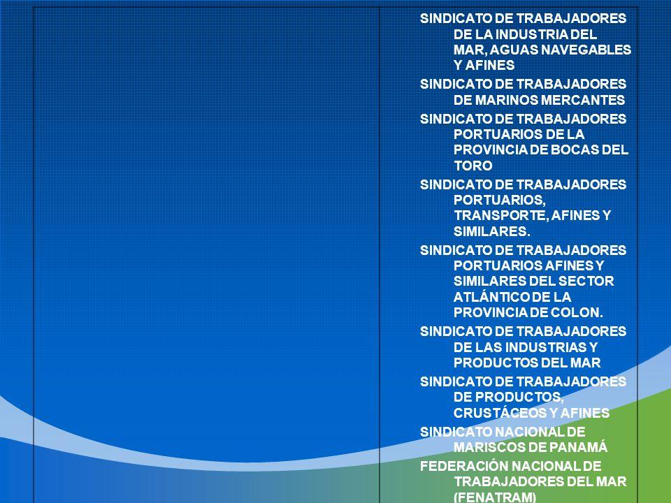 SINDICATO DE TRABAJADORES DE LA INDUSTRIA DEL MAR, AGUAS NAVEGABLES Y AFINES