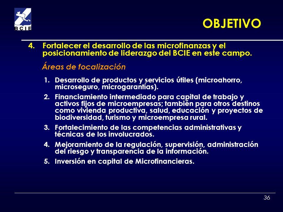 OBJETIVO 4. Fortalecer el desarrollo de las microfinanzas y el posicionamiento de liderazgo del BCIE en este campo.