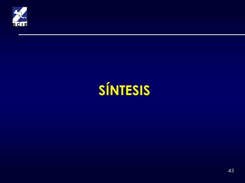 SÍNTESIS