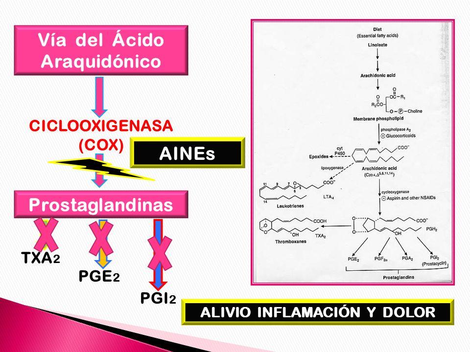 Vía del Ácido Araquidónico ALIVIO INFLAMACIÓN Y DOLOR