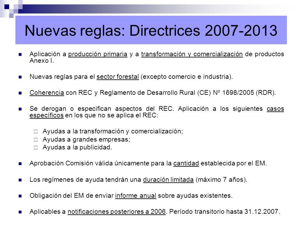 Nuevas reglas: Directrices 2007-2013