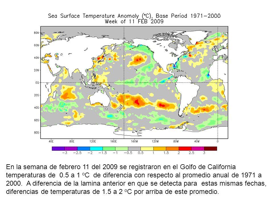 En la semana de febrero 11 del 2009 se registraron en el Golfo de California temperaturas de 0.5 a 1 oC de diferencia con respecto al promedio anual de 1971 a 2000.