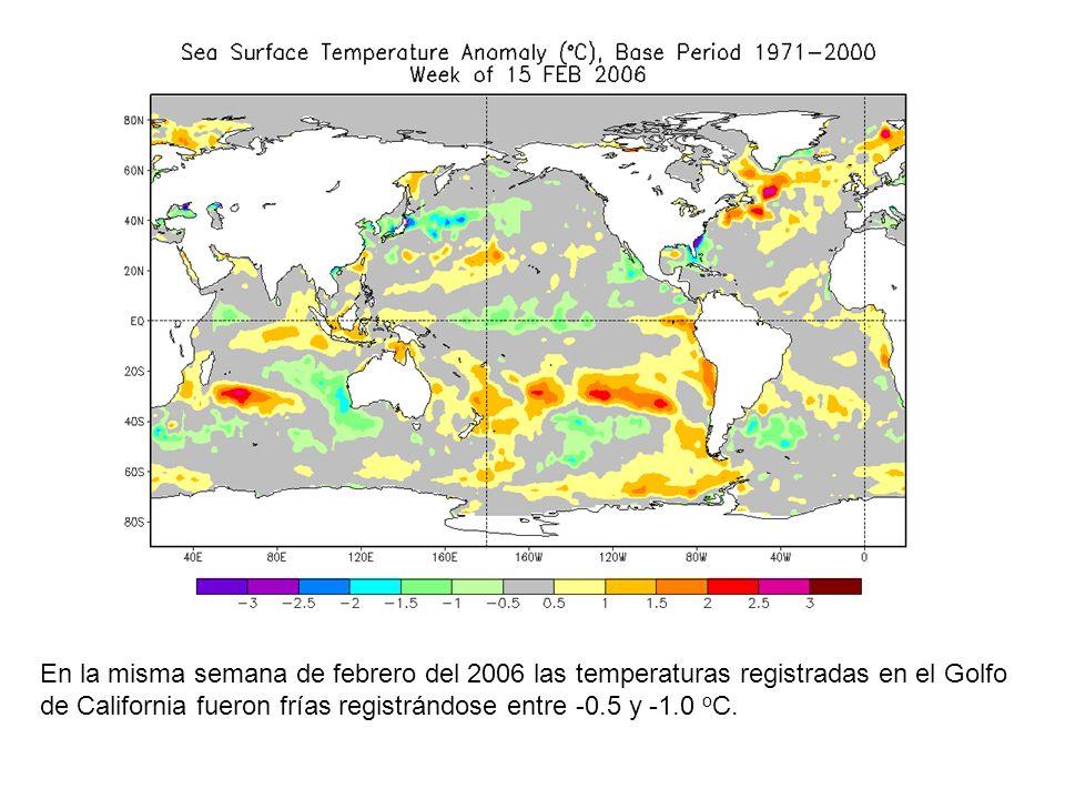 En la misma semana de febrero del 2006 las temperaturas registradas en el Golfo de California fueron frías registrándose entre -0.5 y -1.0 oC.
