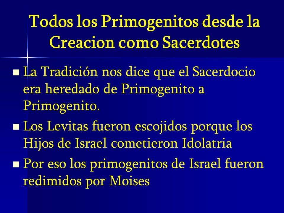 Todos los Primogenitos desde la Creacion como Sacerdotes