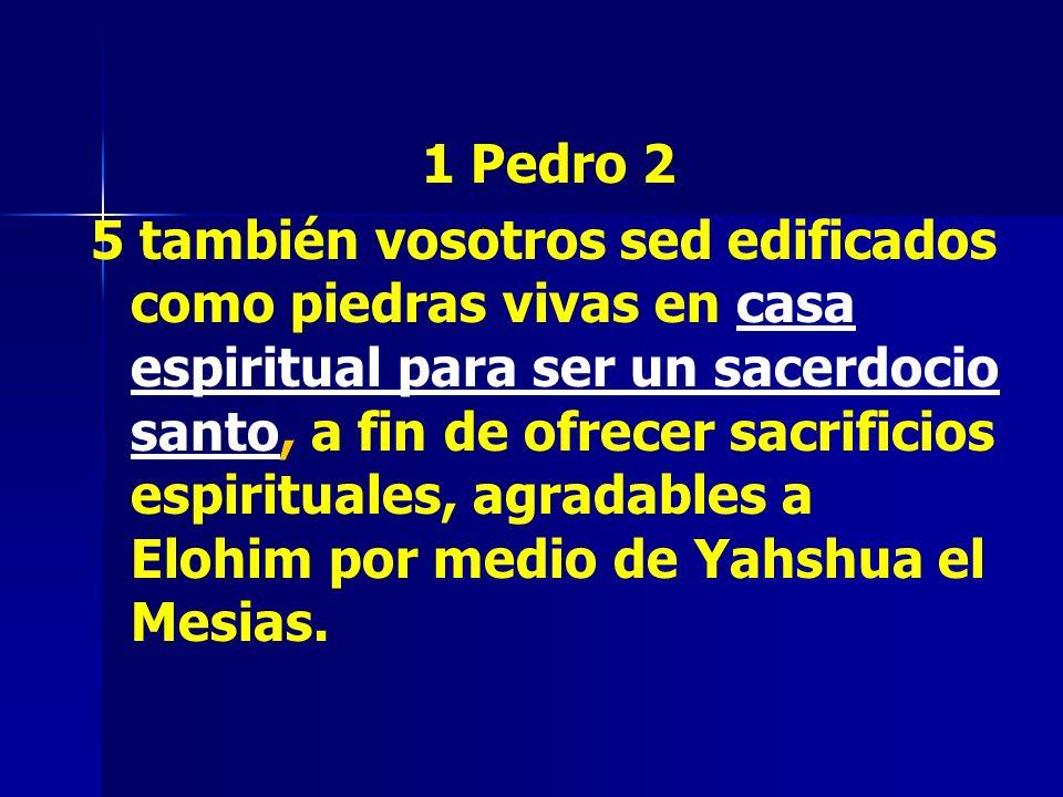 1 Pedro 2