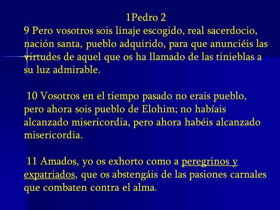 1Pedro 2