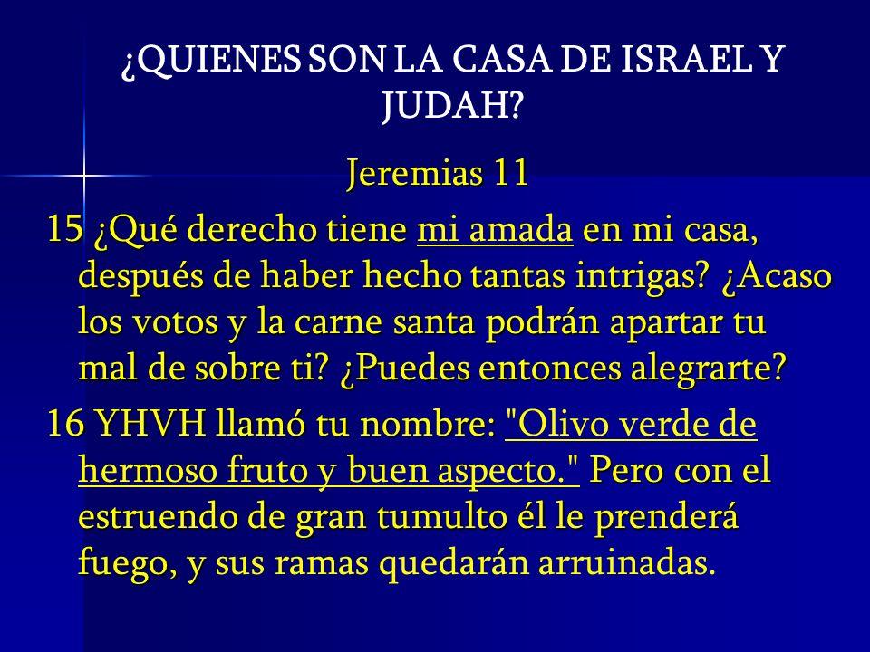 ¿QUIENES SON LA CASA DE ISRAEL Y JUDAH