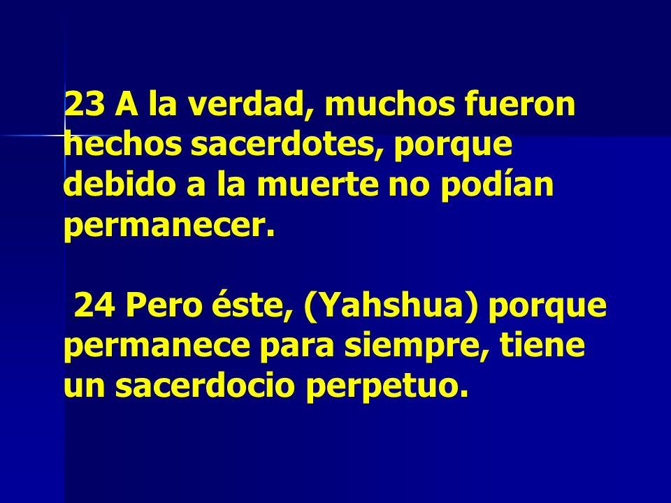 23 A la verdad, muchos fueron hechos sacerdotes, porque debido a la muerte no podían permanecer.