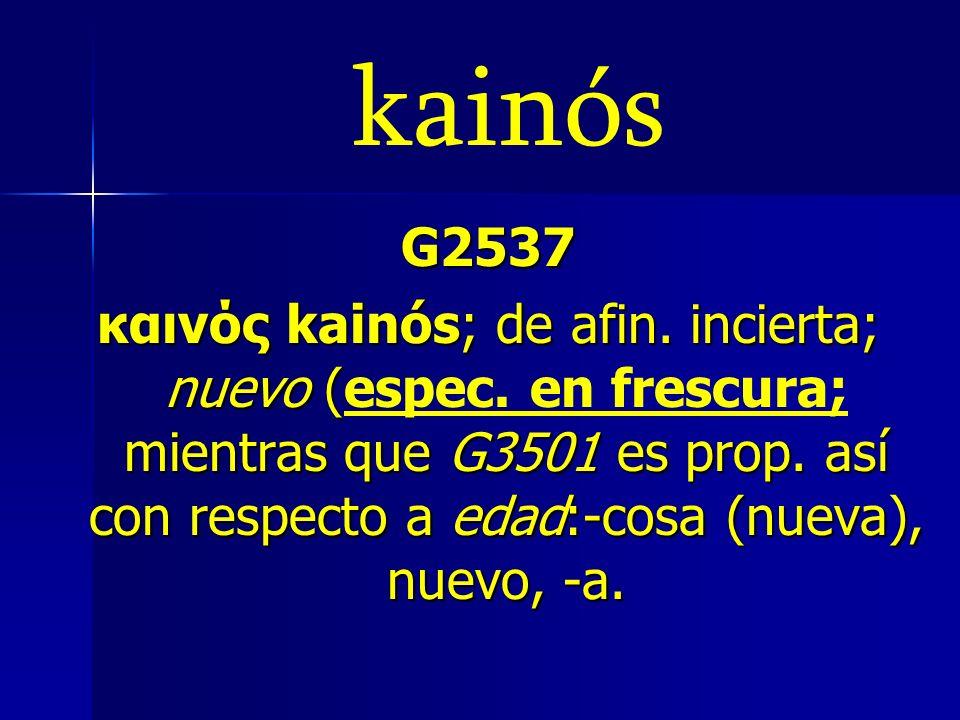 kainós G2537.