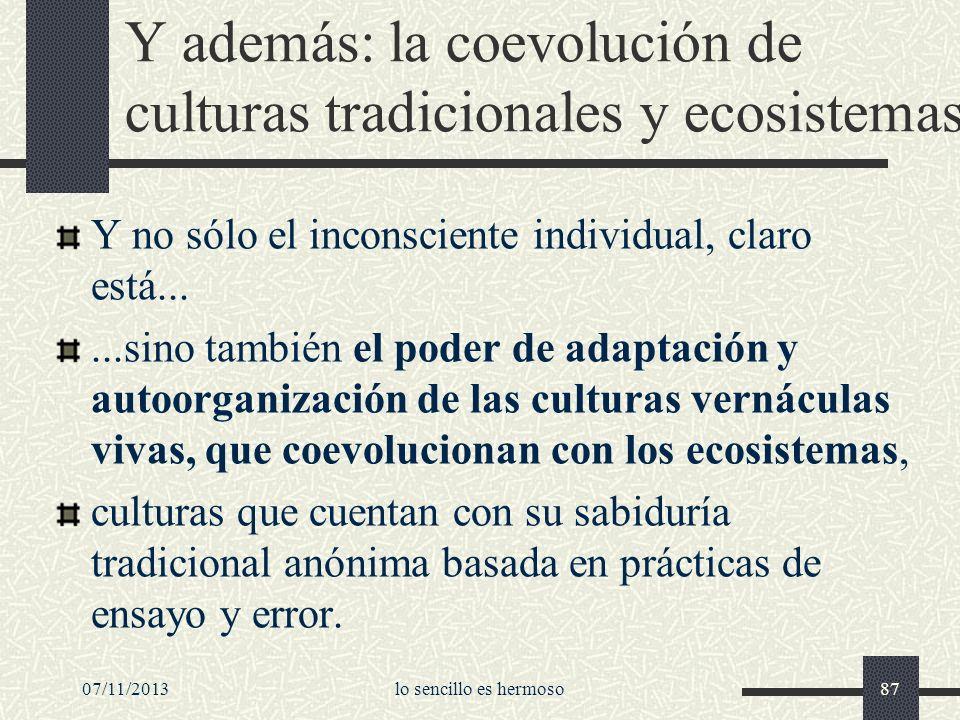 Y además: la coevolución de culturas tradicionales y ecosistemas