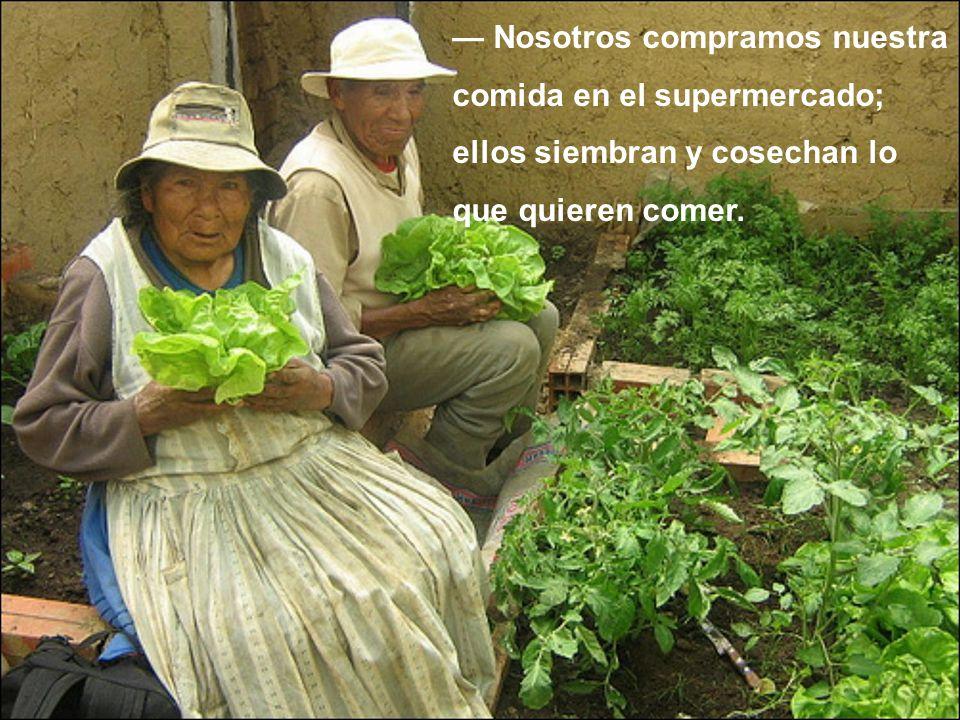 — Nosotros compramos nuestra comida en el supermercado; ellos siembran y cosechan lo que quieren comer.