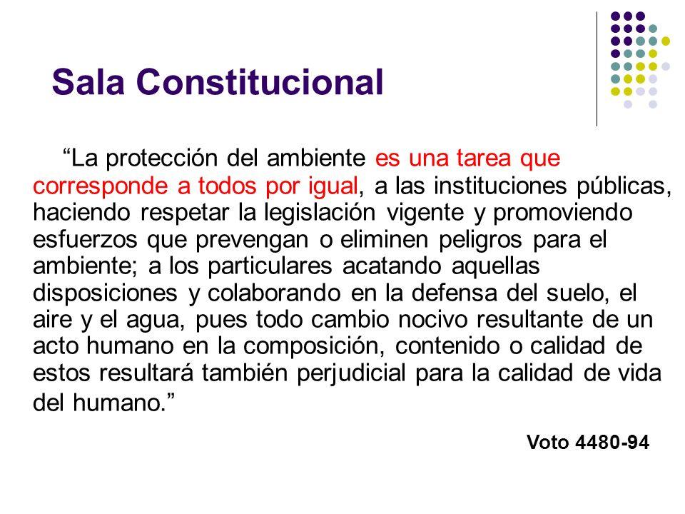 Sala Constitucional
