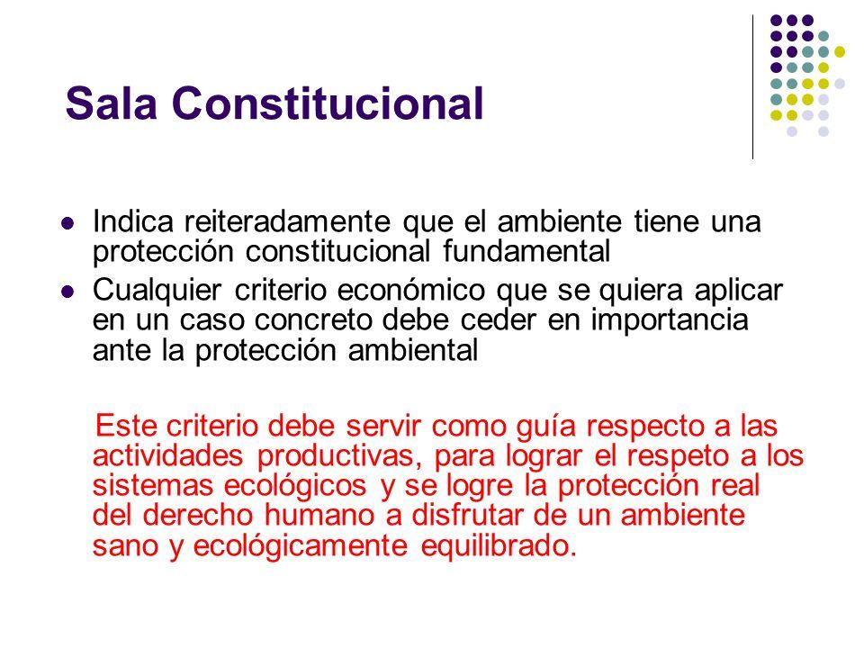 Sala ConstitucionalIndica reiteradamente que el ambiente tiene una protección constitucional fundamental.