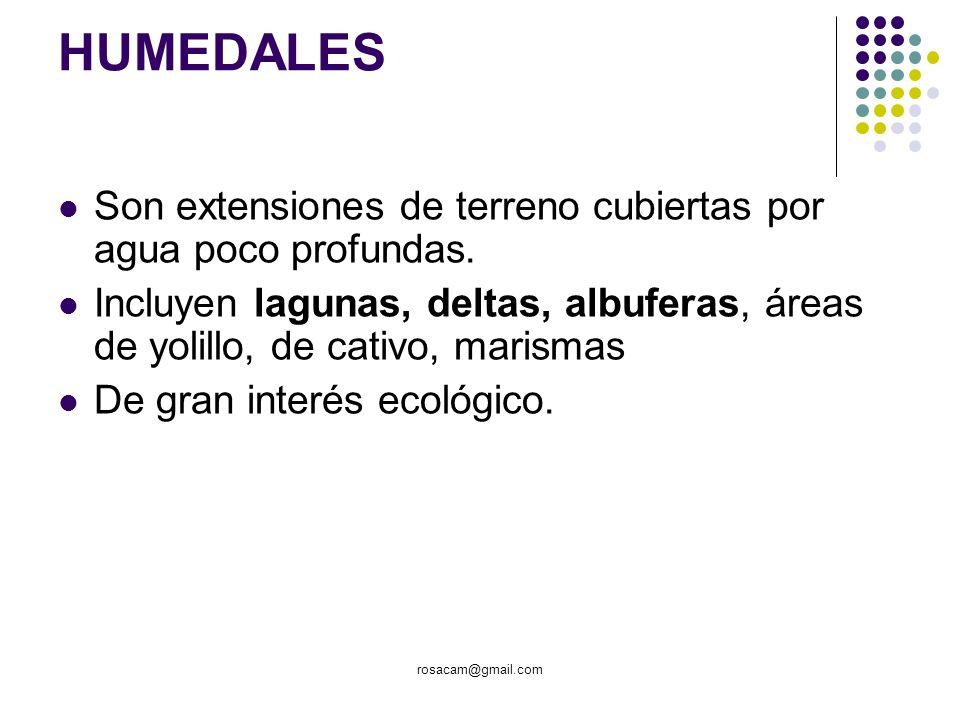 HUMEDALES Son extensiones de terreno cubiertas por agua poco profundas. Incluyen lagunas, deltas, albuferas, áreas de yolillo, de cativo, marismas.