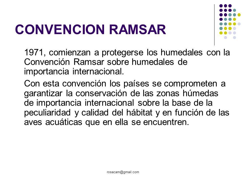 CONVENCION RAMSAR1971, comienzan a protegerse los humedales con la Convención Ramsar sobre humedales de importancia internacional.