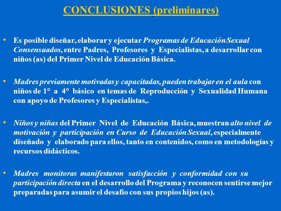 CONCLUSIONES (preliminares)