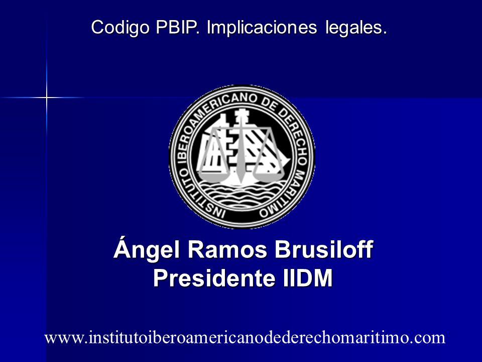 Codigo PBIP. Implicaciones legales.