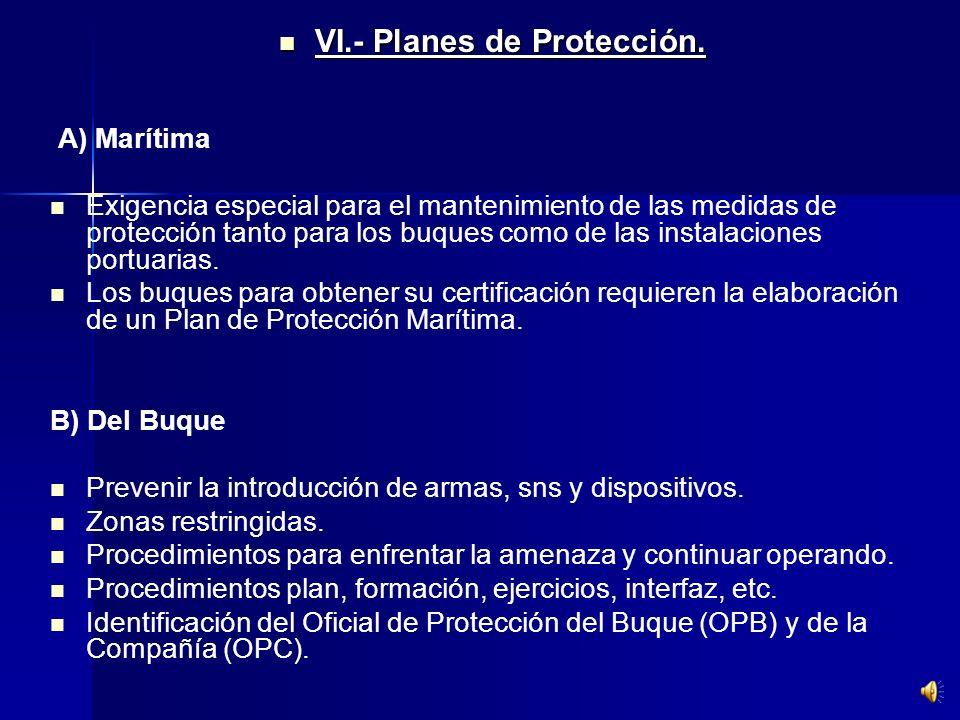 VI.- Planes de Protección.