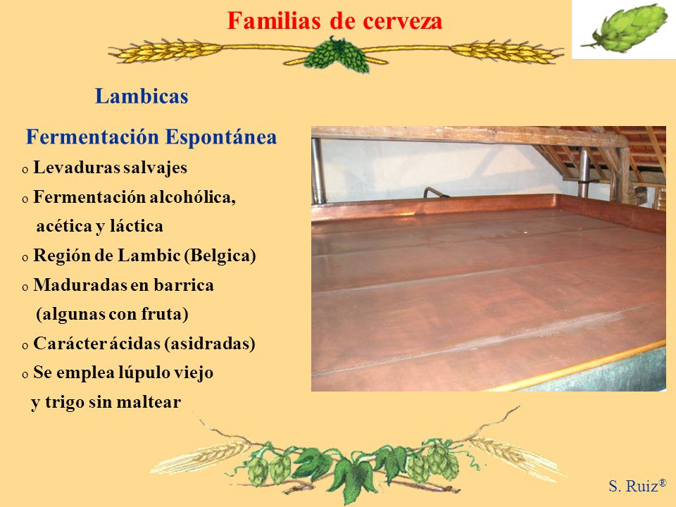 Familias de cerveza Lambicas Fermentación Espontánea