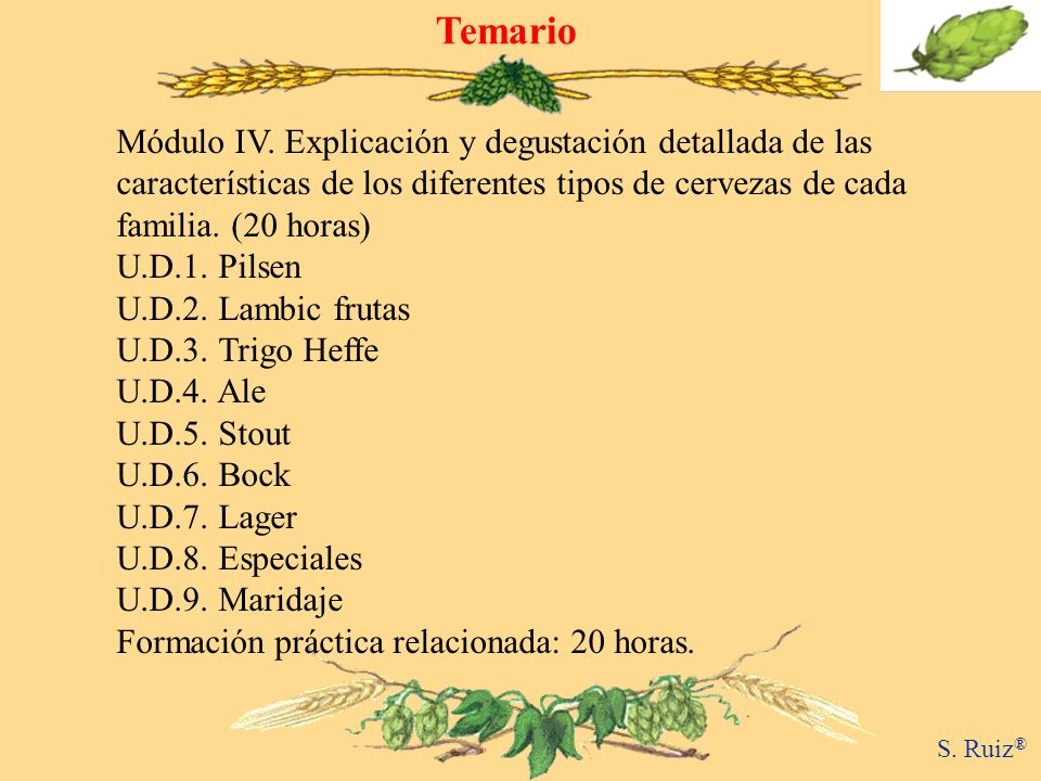 Temario Módulo IV. Explicación y degustación detallada de las características de los diferentes tipos de cervezas de cada familia. (20 horas)