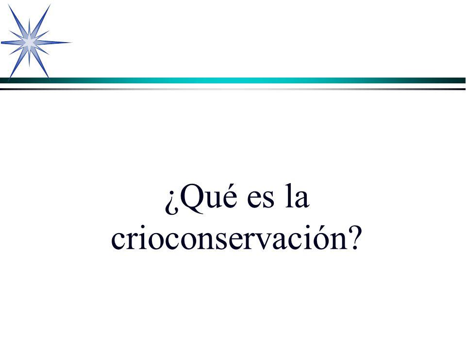 ¿Qué es la crioconservación