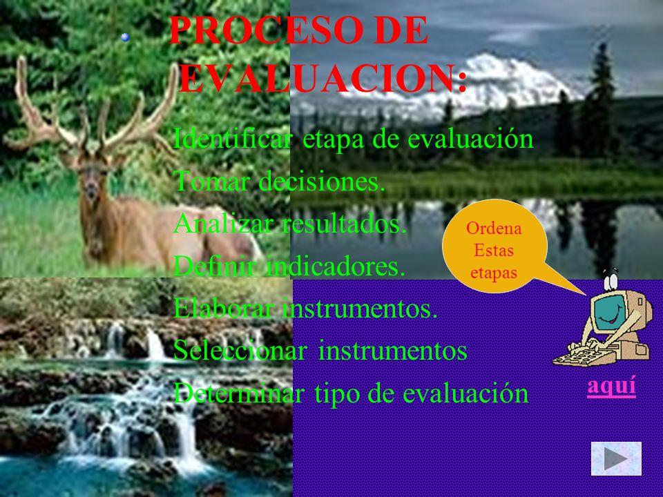 PROCESO DE EVALUACION: