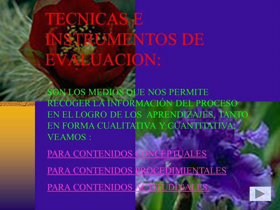 TECNICAS E INSTRUMENTOS DE EVALUACION: