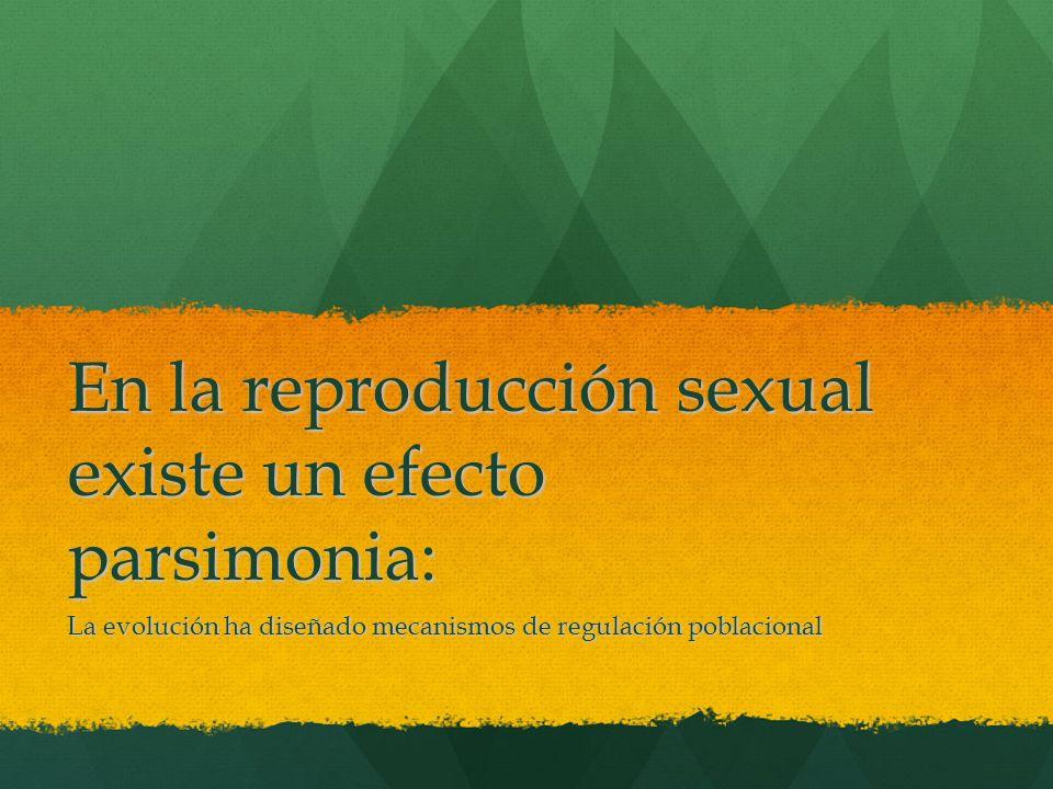 En la reproducción sexual existe un efecto parsimonia: