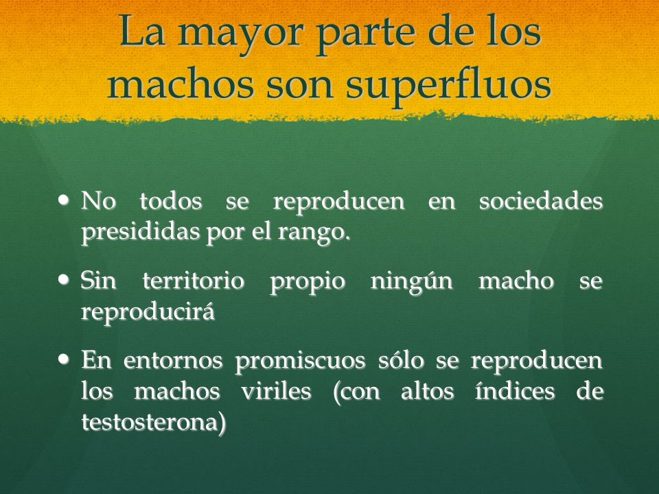 La mayor parte de los machos son superfluos