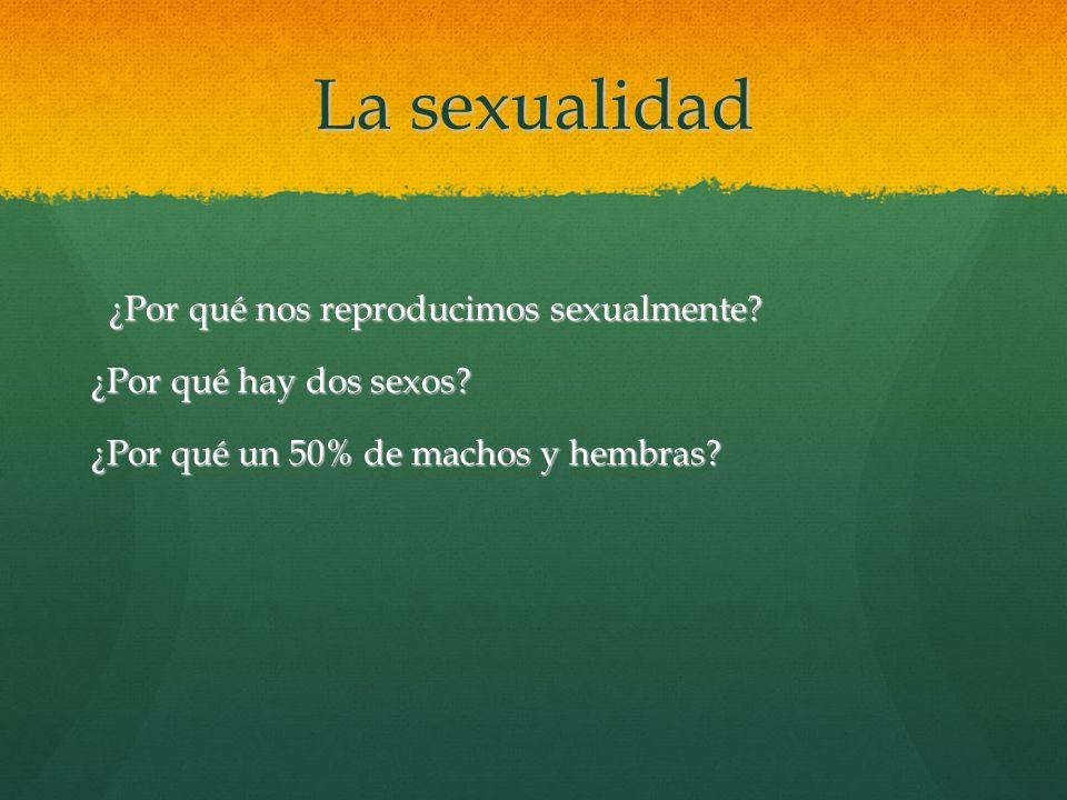 La sexualidad ¿Por qué nos reproducimos sexualmente.