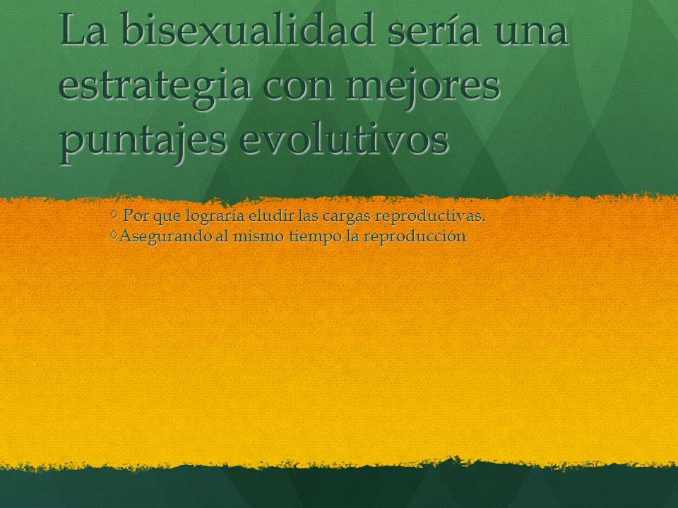 La bisexualidad sería una estrategia con mejores puntajes evolutivos