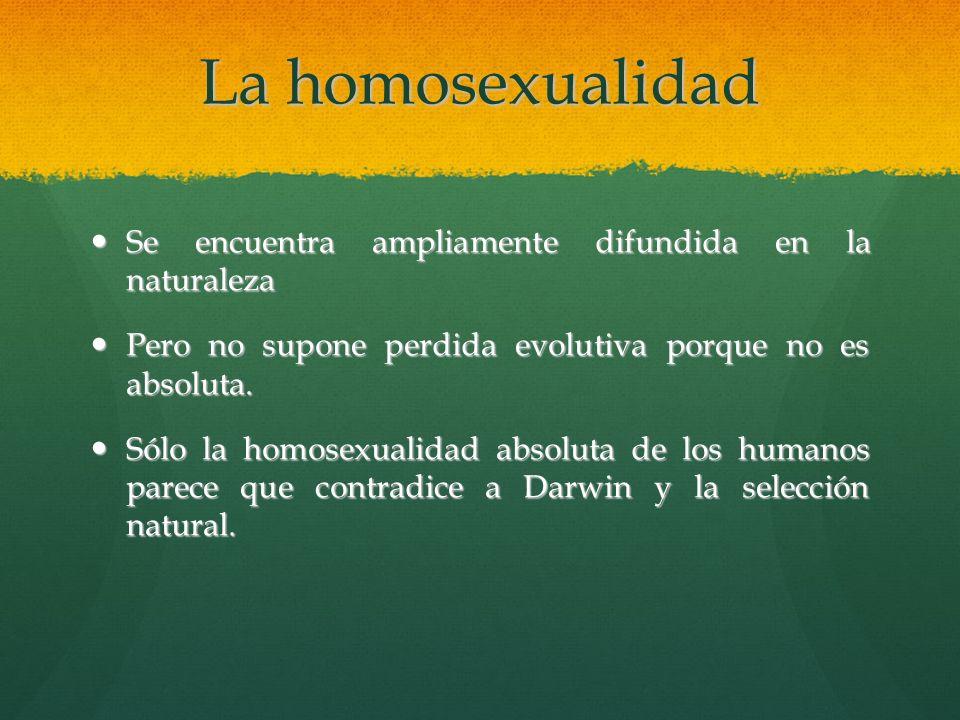 La homosexualidad Se encuentra ampliamente difundida en la naturaleza